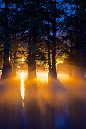 poetic-lake
